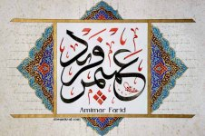 Amimar Farid